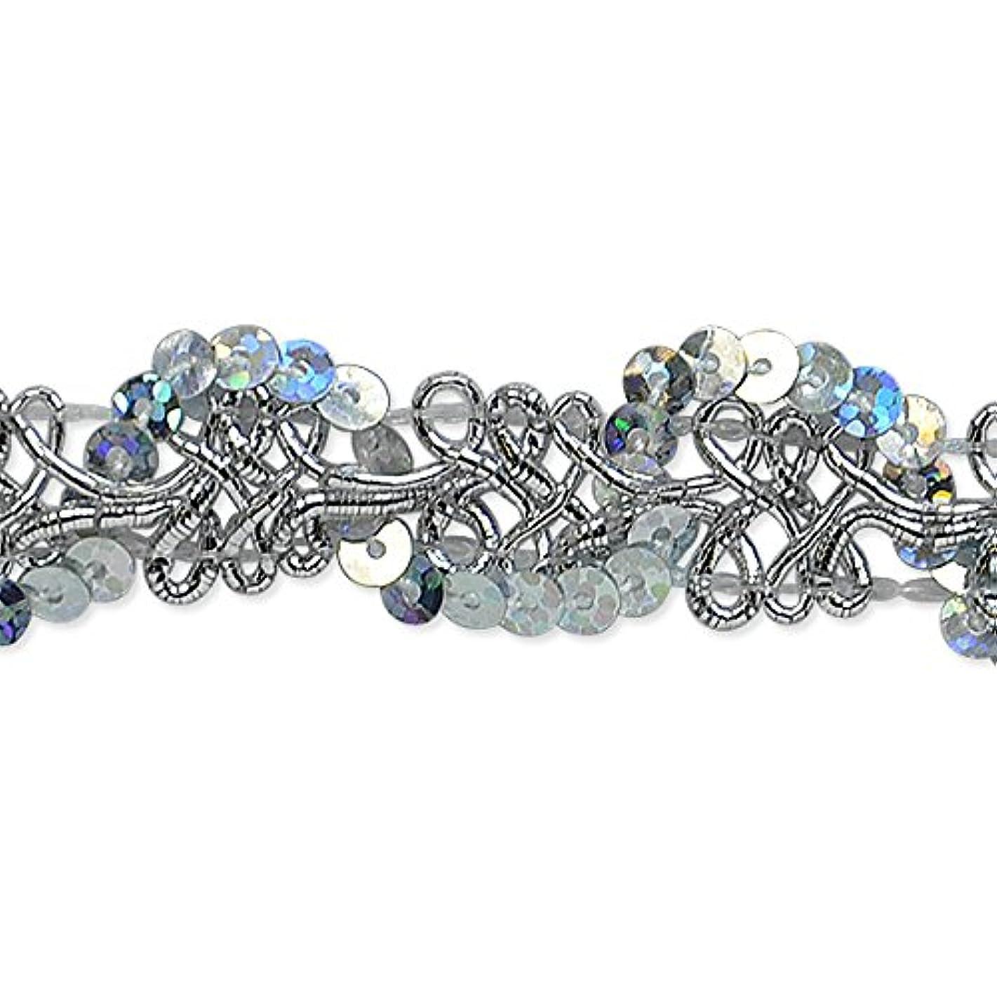 Expo International Lila Sequin Loop Braid Trim Embellishment, 20-Yard, Silver