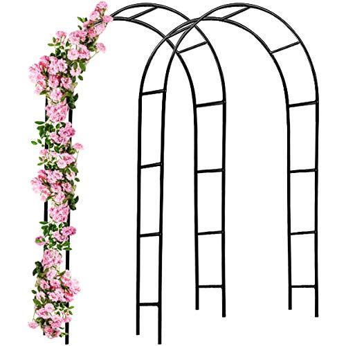 Deuba Arco per rampicanti 2 Pezzi 240x140x37cm Metallo Arco Giardino Fiori Rose Piante Decorazione pergolato Palloncini