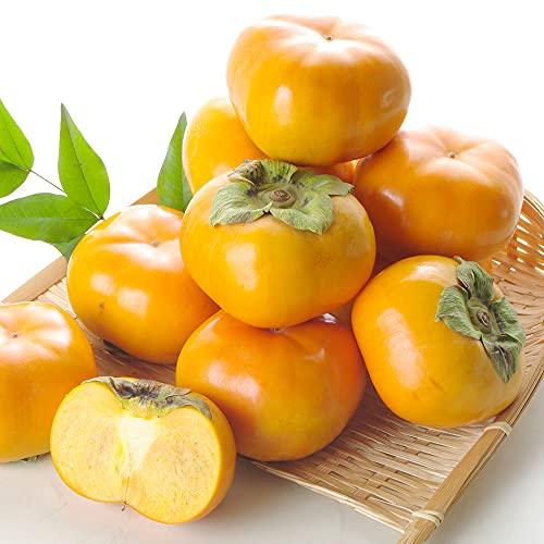 柿 三重・愛知産 次郎柿 約10kg1箱 食品 グルメ 国華園