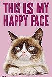 Cats - Grumpy Cat Happy Face - Fun Tiere Katze Poster