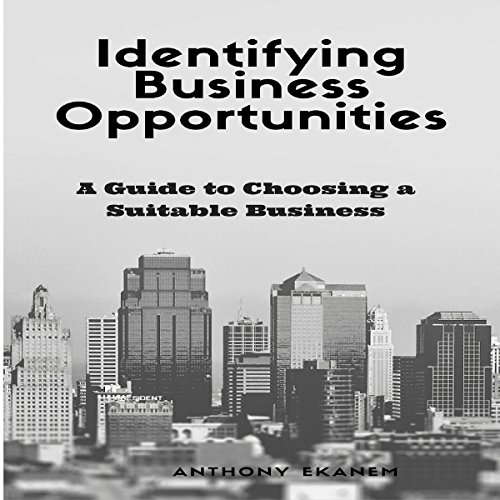 Identifying Business Opportunities audiobook cover art