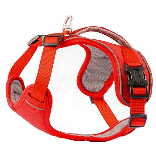 PETLOFT Dog Harness, No Pull Dog Harness, Neck/Chest Adjustable Dog Harness, Dog Harness for Small Medium Large Dogs (Large, Red)