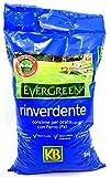 Concime rinverdente per tappeti erbosi Kb Evergreen 5kg