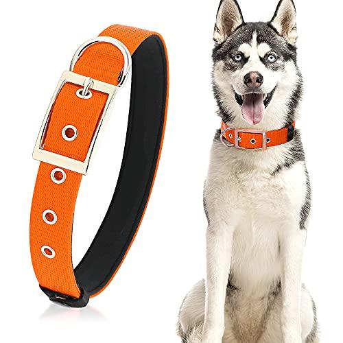 PZRLit Collar Perro Resistente con Suave Acolchado Neopreno, Hebilla de Metal y Anillo en D, Ajustable Transpirable Collares Perros Ancho para la Caminata Diaria Corriendo-Naranja,Ultra Grande