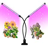 Tabletop Grow Light
