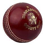 KOOKABURRA County Cricket Club Ball -