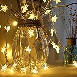 The Purple Tree Decorative Star LED String Lights for Diwali Christmas Wedding - 3 Meter (1 pc) Diwali Lights, Decorative Lights, Diwali Lights for Window, Festive Lights, led Lights