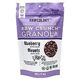 Rawcology - Granola Arándanos Keto 100% orgánico   Natural, sin azúcares añadidos, sin gluten, sin lactosa, vegano, paleo, raw   200g