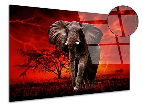 DECLINA - Quadro in plexiglass, Decorazione da Parete in plexiglas, Lavagna in Vetro Acrilico, Motivo: Elefante Selvatico sotto Il Toner, 50 x 30 cm