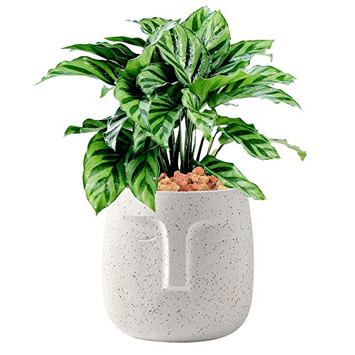 Terracotta Plant Pot, 5.5 inch Unglazed Modern Human Face Vase Succulent Head Planter Pot Indoor Pottery Flower Clay Bonsai Containers with Drainage Holes /Saucer (White)