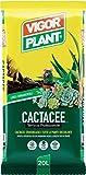 VIGORPLANT Terriccio per Cactus e Piante Grasse da 20 Litri...