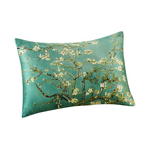 ALASKA BEAR Luxury Silk Pillowcase for Beauty Sleep, Genuine 22 Momme Mulberry Silk Charmeuse Satin Pillow Case Slip for Hair and Skin Face Wellness Queen Size (1pc, Gift Box)