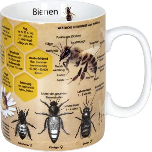 Wissensbecher Tasse verschiedend Motive 460ml (Bienen)