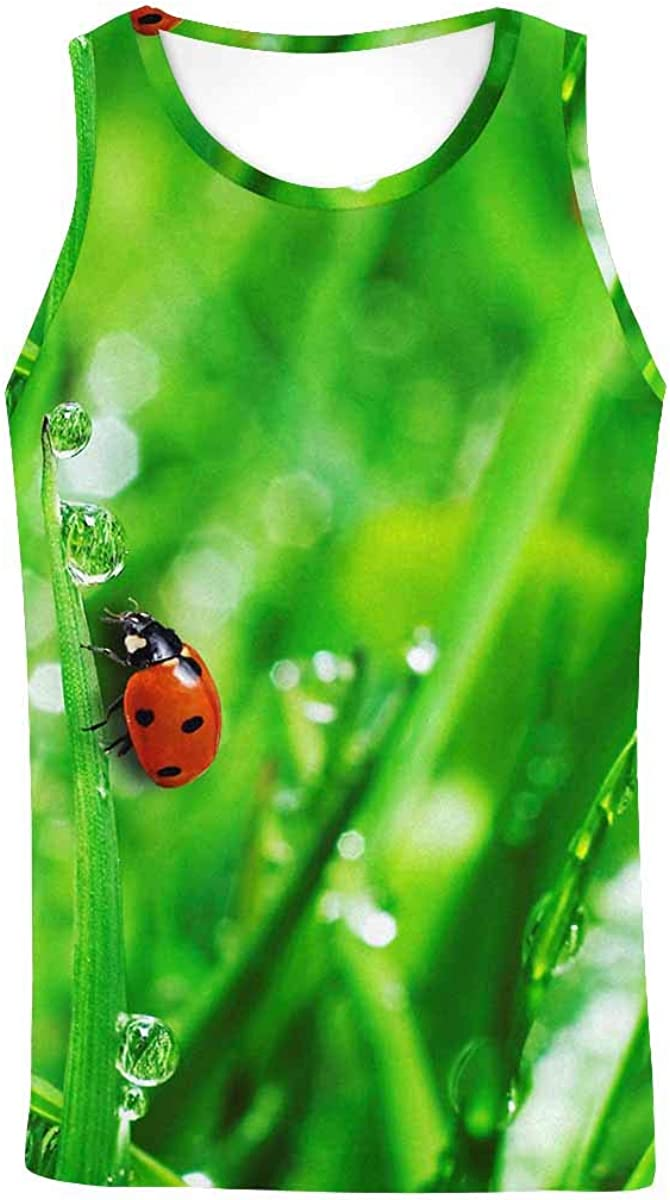 InterestPrint Men's Muscle Gym Workout Training Sleeveless Tank Top Ladybug Fly on a Leaf
