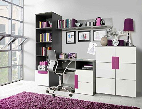 Furniture24 Wohnwand Libelle Bücherregal Schreibtisch Kommode Hängeregal (Grau/Weiß/Violett)