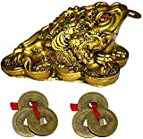 GJ Grand Jhaiji Feng Shui Frog Showpiece Brass Colour