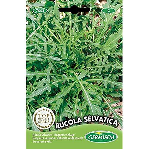 Germisem Rucola Selvatica Semi di Rucola 2 g