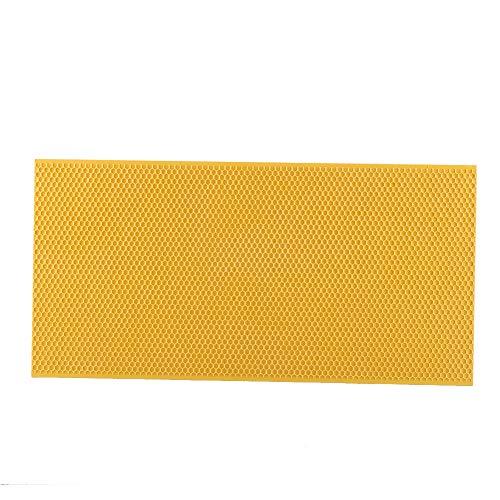 Cafopgrill Fond de Teint en Peigne, Cadre apicole respectueux de l'environnement en Plastique avec Outils de soulèvement pour Apiculture de Fond de Teint Jaune/Noir en Option(02)