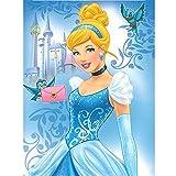 Disney Princess Cinderella 'Little Friends' Royal Plush Raschel Throw Blankets, Twin Size 60 by 80 inches, Light Blue