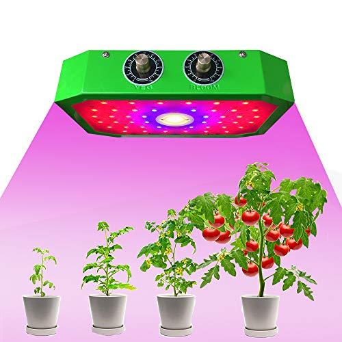 MYYINGELE Lampe pour Plante 1000W, Croissance Floraison Full Spectrum LED Grow Light avec Veg/Bloom Canal pour Plantes Intérieur Légumes et Fleurs Hydroponique Germination, Green