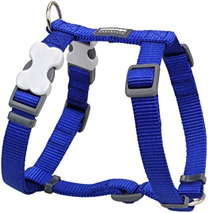Red Dingo Classic Dog Harness Small Blue product image