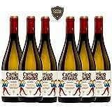 CAMINO DE CABRAS Caja de vino - Albariño - vino blanco – D.O. Rías Baixas – Producto Gourmet - Vino para regalar - Vino Premium - 6 botellas x 750 ml.