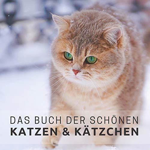 Das Buch der schönen Katzen und Kätzchen: Bildband für Senioren und Demenzkranke (Bildbände und Aktivitäten für Senioren)