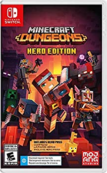 Dungeons Hero Edition for Nintendo Switch