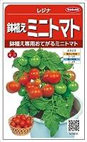 サカタのタネ 鉢植えミニトマト レジナ