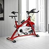 ECO-DE Bicicleta de Spinning Giro Pro. Uso semiprofesional con pulsómetro, Pantalla LCD y Resistencia Variable....