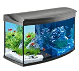 Tetra AquaartLED Acquario, 100 L, Antracite