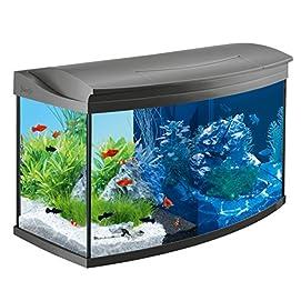 Tetra AquaArt Evolution Line mit LED im Aquarium-Komplett-Set