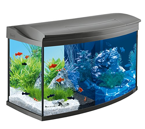 Tetra AquaArt Evolution Line LED Aquarium-Komplett-Set 100 Liter anthrazit (moderne LED Beleuchtung,...