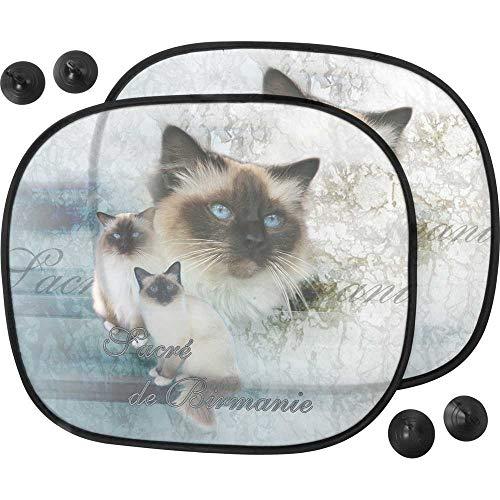 Pets-easy Pare Soleil Chat - Macchina per gatto sacra della Birmania