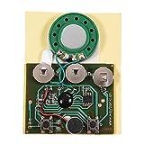 fosa 30s música sonido de grabación de voz de dispositivo de módulo Chip 0.5W con pila de botón para DIY Tarjetas de Audio(fotoinducido)