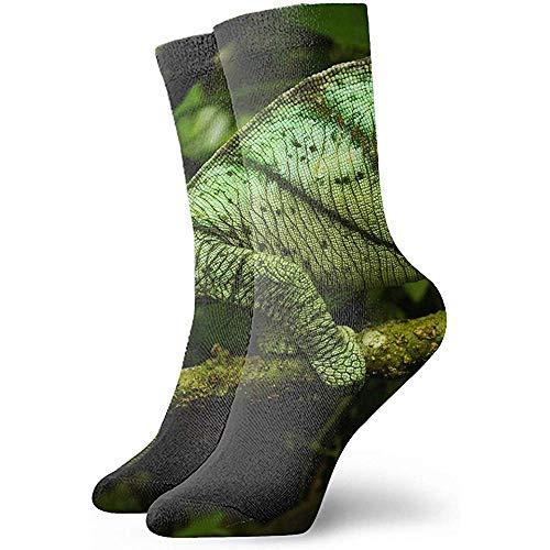 Dydan Tne Unisexe Art Patterned Casual Crew Chaussettes Reptiles Lizard Bon pour idée Cadeau