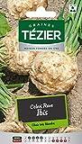 Tezier - Céleri rave Ibis