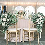 ZISUEX 2 Pack Total 13.2 FT Fuax Eucalyptus Leaves Garland Greenery Garland Home Decor Backdrop Spring Fake Leaves Vine Garland Silver Dollar Hanging Artificial Flowers Backdrop for Wedding Table Wall