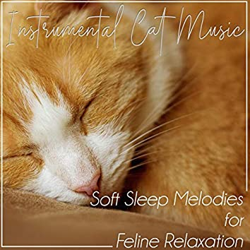 Instrumental Cat Music: Soft Sleep Melodies for Feline Relaxation