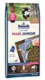 bosch HPC Maxi Junior