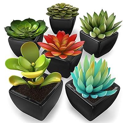 kdelicate Lodhi's Artificial Succulent Assorted Decorative Faux Succulent Fake Plants -Choose Your Color