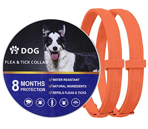 2 Pack Natural Flea Collar for Dogs with 8-Month Prevention, Waterproof Dog Flea and Tick Collar, Adjustable Flea and Tick Collar for Dogs One Size Fits All, 25 Inch