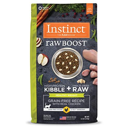 Best raw cat food