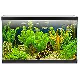Zoom IMG-2 aqpet one mini acquario in