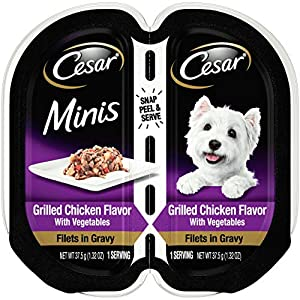CESAR Gourmet Filets in Sauce Wet Dog Food, Pack of 24