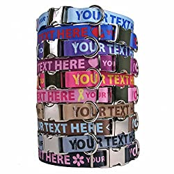 383ccb9f03b6 Dogs Can't Text Their Contact Info. But Personalized Dog Collars Say ...