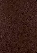 Best ESV Single Column Journaling Bible, Large Print (Mocha) Review
