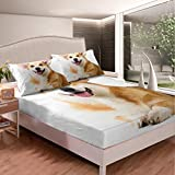 Kids Cute Dog Bed Sheets Cartoon Pet Puppy Pattern Bed Sheet Set for Kids Boys Girls Children Lovely Welsh Corgi Dog Bedding Set Yellow White Fitted Sheet Bedroom Collection 2Pcs Twin Size