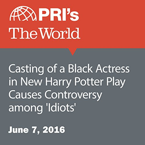 Casting of a Black Actress in New Harry Potter Play Causes Controversy among 'Idiots' audiobook cover art