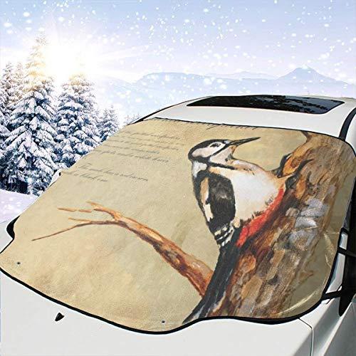 Mattrey Specht Windschutzscheiben-Sonnenschutz für Vorder- und Wassersonnenlicht, Schwarz, Einheitsgröße